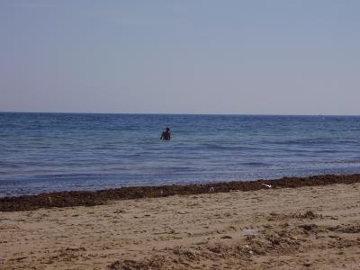 20070807215447-playa-de-hierbabuena-barbate.jpg