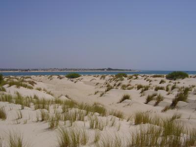 20070807220526-playa-de-campo-soto-playa-castillo-cadiz-2.jpg