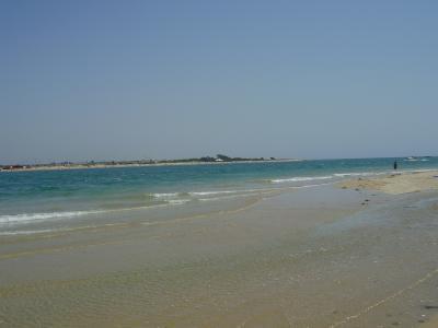 20070807220716-playa-de-campo-soto-playa-de-castillo-cadiz-8.jpg