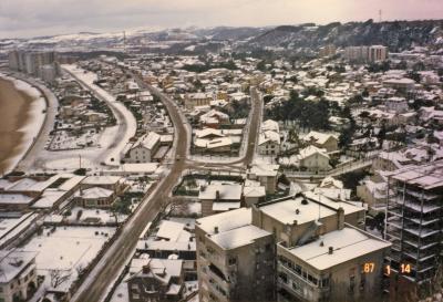 20080110052706-nevada-en-salinas-1987.jpg