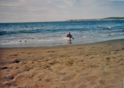 20080628045829-playa-salinas1.jpg