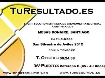 20121231200627-san-silvestre2012.jpg